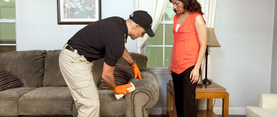 Hobart, IN carpet upholstery cleaning